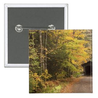 Autumn landscape, Vermont, USA 4 2 Inch Square Button