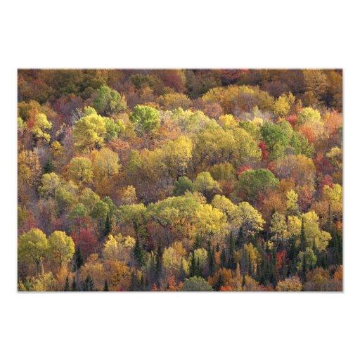 Autumn landscape, Vermont, USA Photograph
