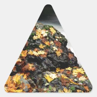 Autumn Leaf Covered Rock Elk River Oregon Triangle Sticker