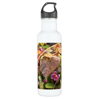 autumn leaf in early spring 24oz water bottle