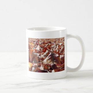 Autumn leaf in the fall coffee mug