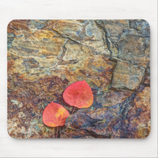 Autumn leaf on rock, California Mouse Pad