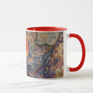 Autumn leaf on rock, California Mug