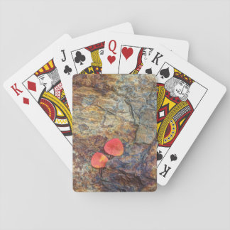 Autumn leaf on rock, California Playing Cards