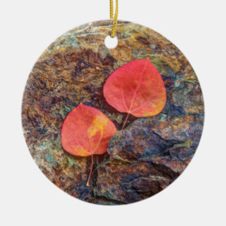 Autumn leaf on rock, California Round Ceramic Ornament