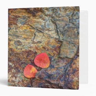 Autumn leaf on rock, California Vinyl Binder