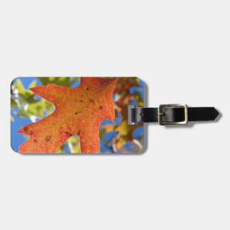 Autumn Leaf Up Close Luggage Tag