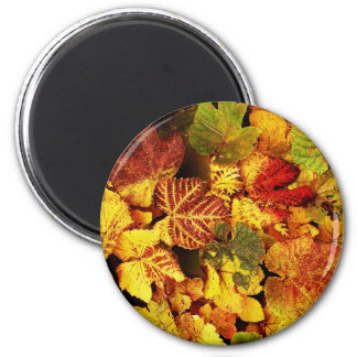 Autumn Leafs natural natural  Green Trees Earth Be 2 Inch Round Magnet