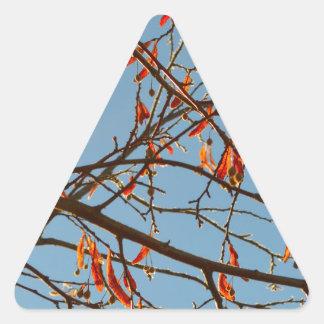 Autumn leafs triangle sticker