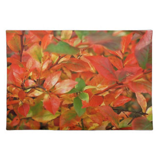 Autumn Leaves American MoJo Placemat