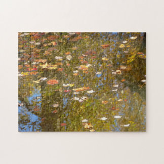 Autumn Leaves and Stream Reflection at Greenbelt Jigsaw Puzzle