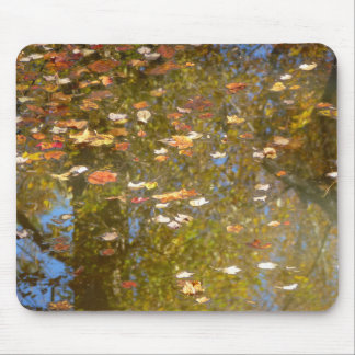 Autumn Leaves and Stream Reflection at Greenbelt Mouse Pad