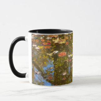Autumn Leaves and Stream Reflection at Greenbelt Mug