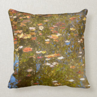 Autumn Leaves and Stream Reflection at Greenbelt Throw Pillow