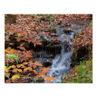 Autumn Leaves and Waterfall Photo Poster