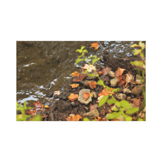 Autumn leaves by the river canvas print