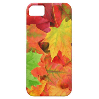 AUTUMN LEAVES CASE FOR THE iPhone 5