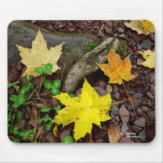 Autumn Leaves Clover Pebbles Mousepad