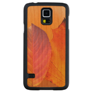 Autumn Leaves Colorful Modern Fine Art Photography Carved Cherry Galaxy S5 Case