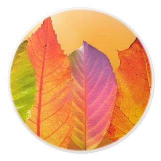Autumn Leaves Colorful Modern Fine Art Photography Ceramic Knob