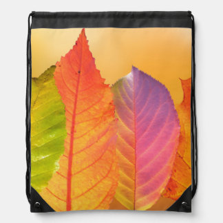 Autumn Leaves Colorful Modern Fine Art Photography Drawstring Bag