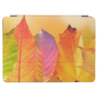 Autumn Leaves Colorful Modern Fine Art Photography iPad Air Cover