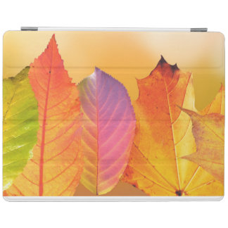 Autumn Leaves Colorful Modern Fine Art Photography iPad Cover