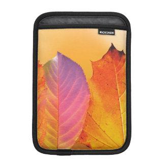 Autumn Leaves Colorful Modern Fine Art Photography iPad Mini Sleeves