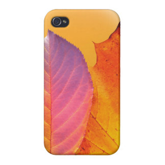 Autumn Leaves Colorful Modern Fine Art Photography iPhone 4 Cover