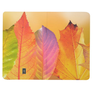 Autumn Leaves Colorful Modern Fine Art Photography Journals