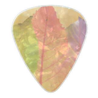 Autumn Leaves Colorful Modern Fine Art Photography Pearl Celluloid Guitar Pick