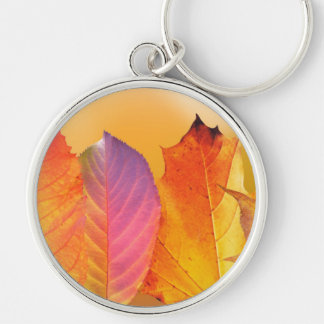 Autumn Leaves Colorful Modern Fine Art Photography Silver-Colored Round Keychain