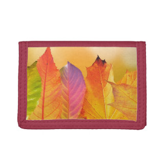 Autumn Leaves Colorful Modern Fine Art Photography Trifold Wallet
