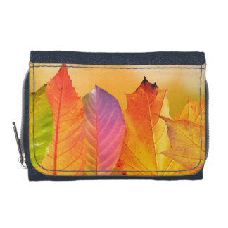 Autumn Leaves Colorful Modern Fine Art Photography Wallet
