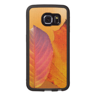 Autumn Leaves Colorful Modern Fine Art Photography Wood Phone Case