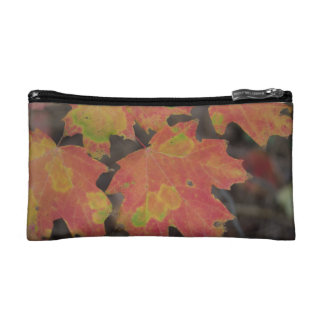 Autumn Leaves Cosmetic Bag