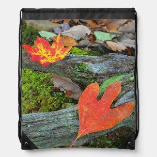 Autumn Leaves Drawstring Bag