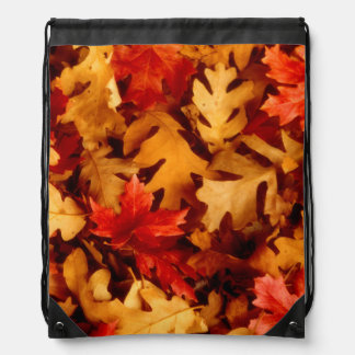 Autumn Leaves - Fall Color Drawstring Bag