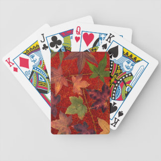 Autumn Leaves Fall Season Tree Leaf Colorful Bicycle Playing Cards