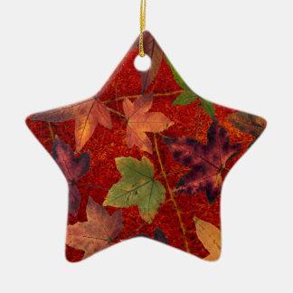 Autumn Leaves Fall Season Tree Leaf Colorful Ceramic Star Ornament
