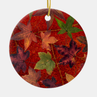 Autumn Leaves Fall Season Tree Leaf Colorful Round Ceramic Ornament