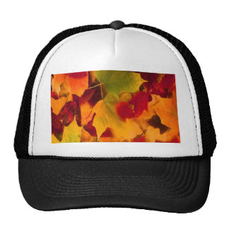 AUTUMN LEAVES HATS