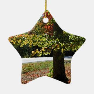 Autumn Leaves in Maine Ceramic Star Ornament