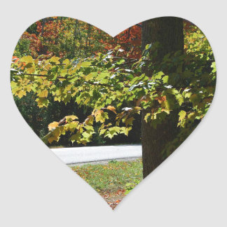 Autumn Leaves in Maine Heart Sticker