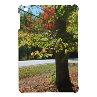 Autumn Leaves in Maine iPad Mini Cover