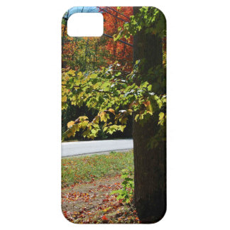 Autumn Leaves in Maine iPhone 5 Covers