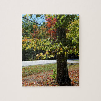 Autumn Leaves in Maine Jigsaw Puzzle