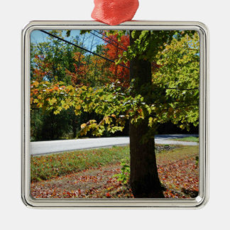 Autumn Leaves in Maine Metal Ornament