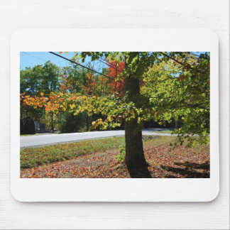 Autumn Leaves in Maine Mouse Pad