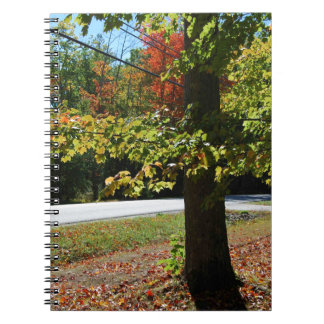 Autumn Leaves in Maine Notebook